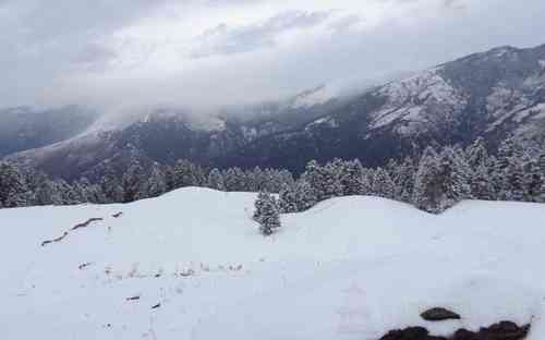 Parashar Valley Snowfall Season Jan Feb
