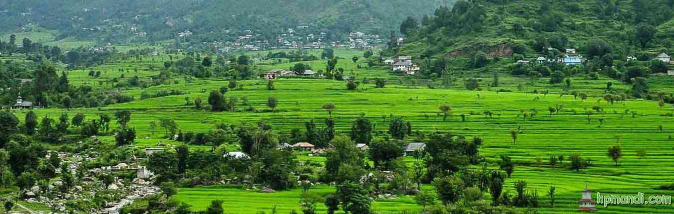 Karsog-Valley-Mandi-District-Himachal-Pradesh